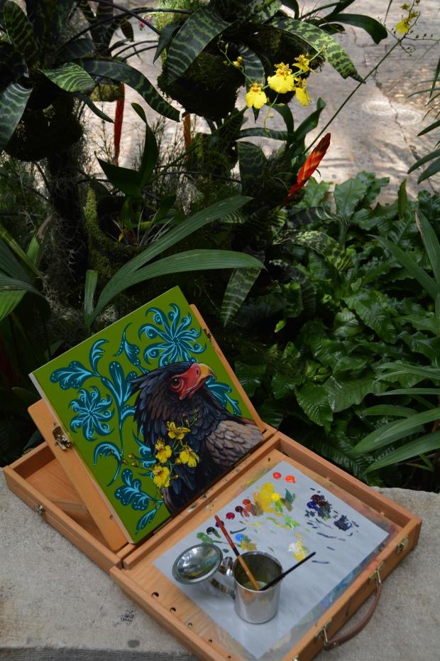 Ashley Cecil painting Bateleur Eagle on Olive